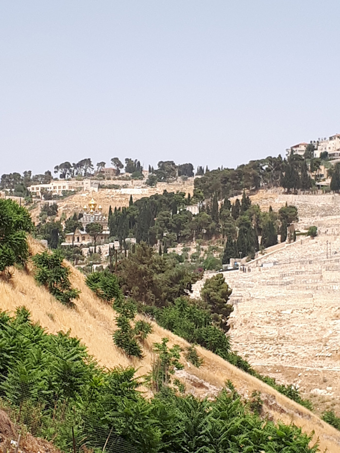 The composition reference. Photo was taken all the way over from the City of David, on a whole other trip.