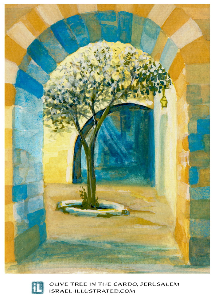 Hand-drawn postcard from Jerusalem: Young olive tree in the Cardo. Gouache on paper. Illustrated by Netta Canfi, israel-illustrated.com