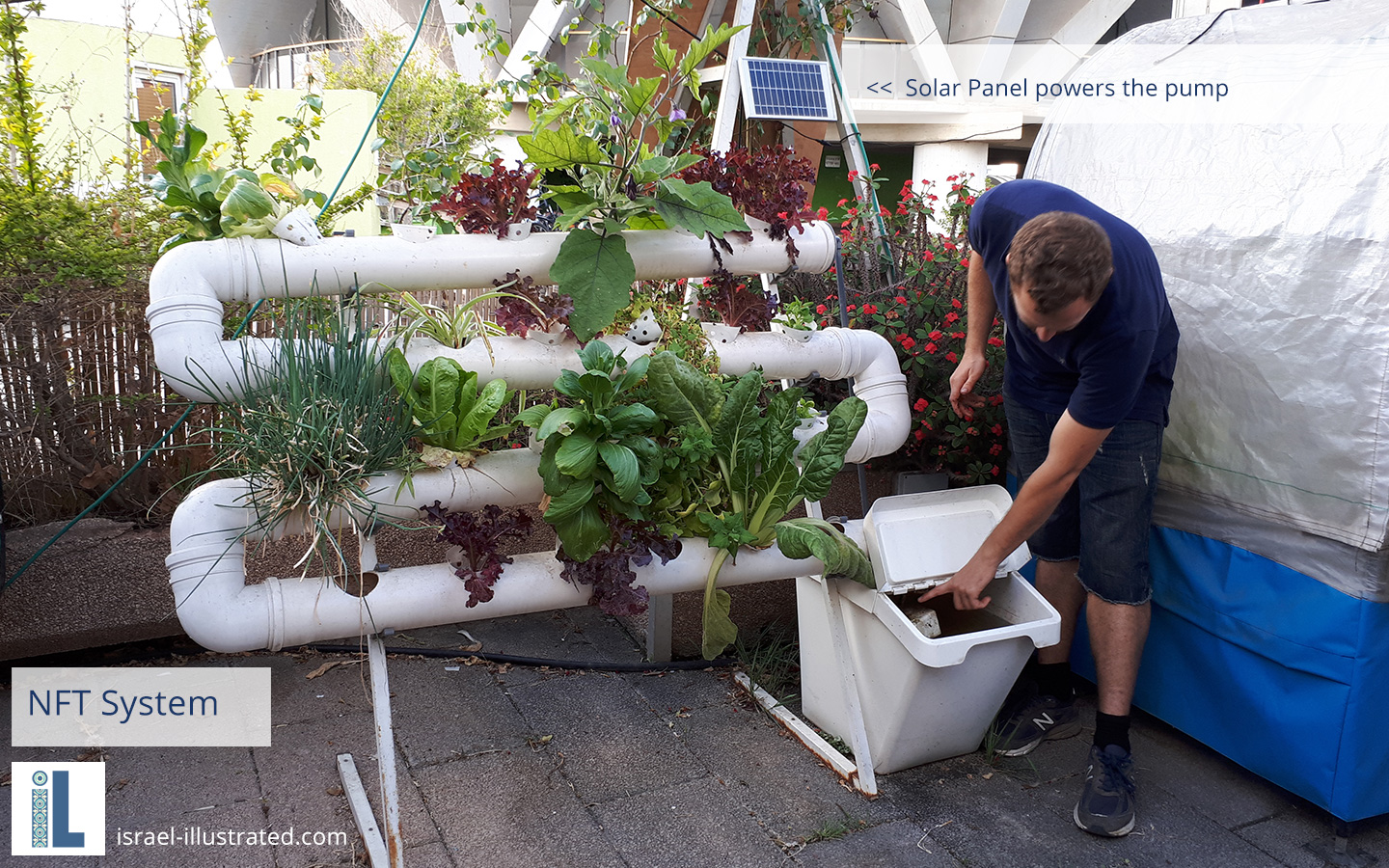 Solar powered hydroponic system - compact, fits on any sun-porch :-)