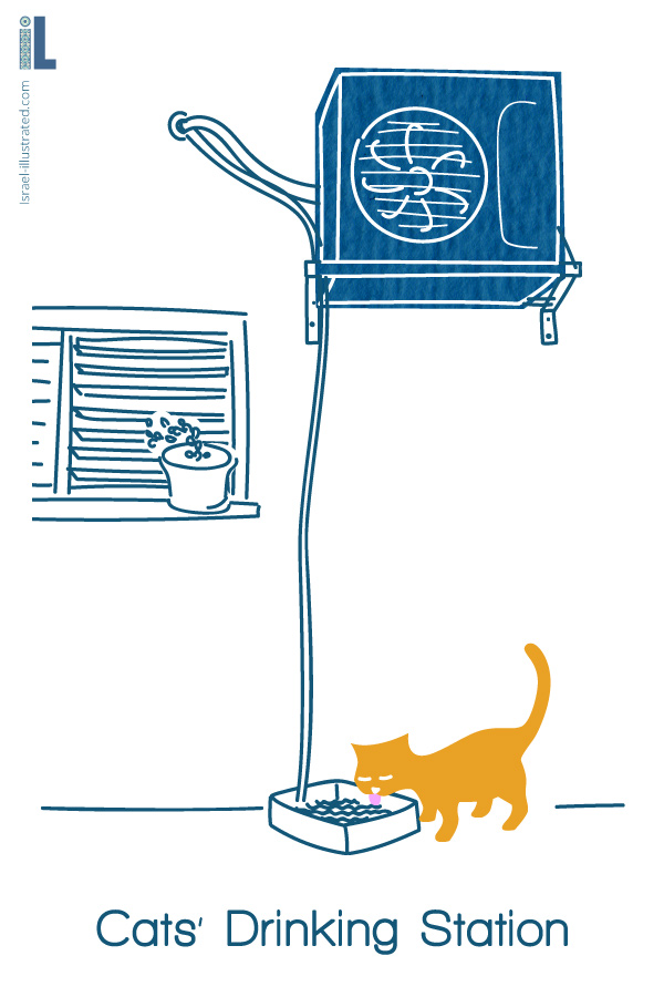 Make a Drinking station for street cats