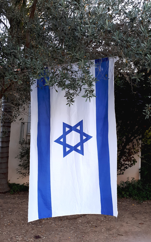 The Israeli flag hanging vertically from an olive tree